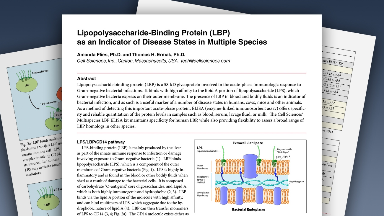 White Paper Details Lipopolysaccharide Binding Protein (LBP) as Indicator of Disease States in Multiple Species